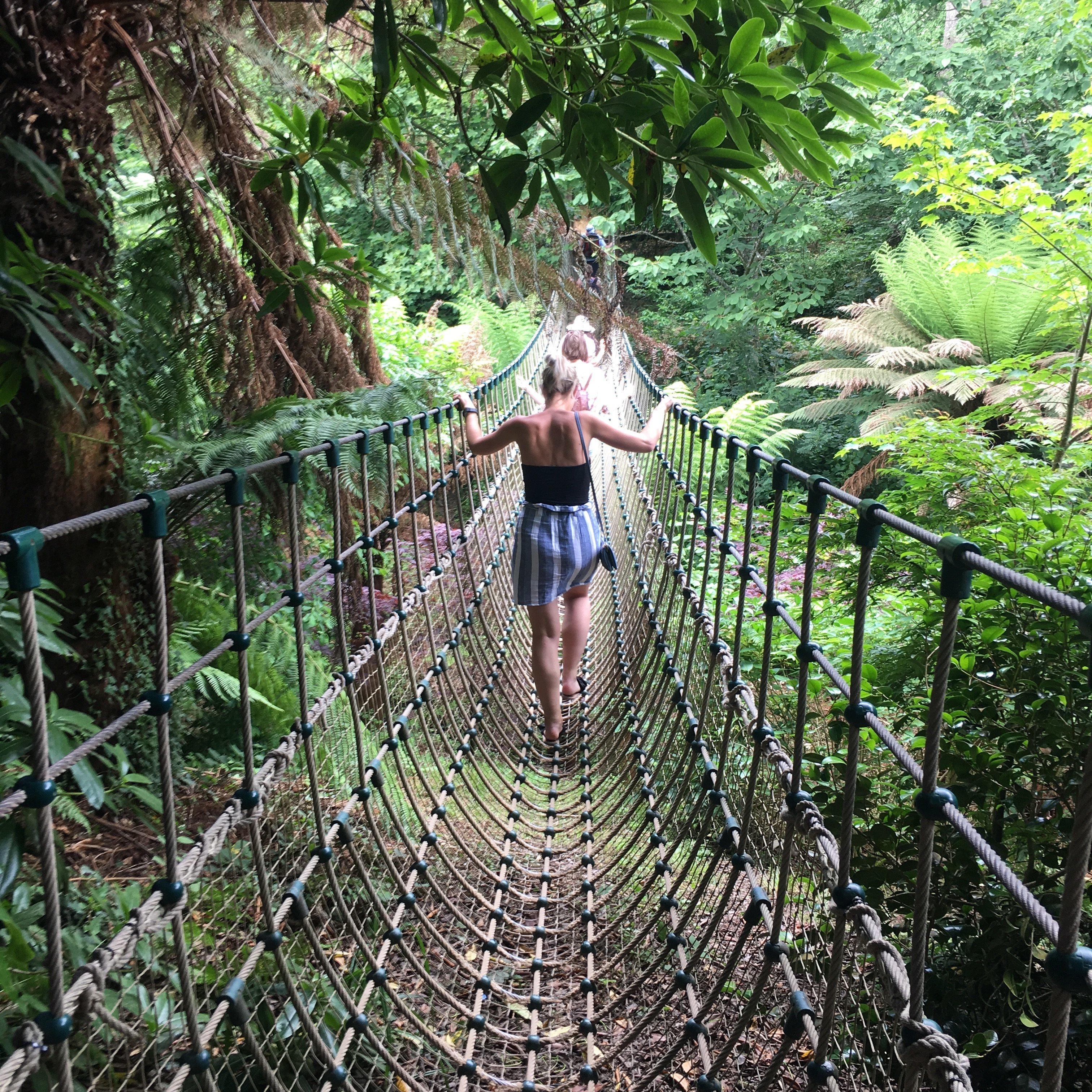 Sam crossing a rope bridge outside