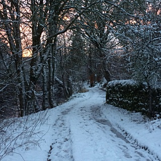 Why Preparing For Winter Is Essential To Survive Rural Life With Incontinence
